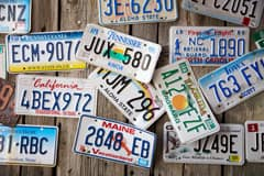 New or Transferred License Plates