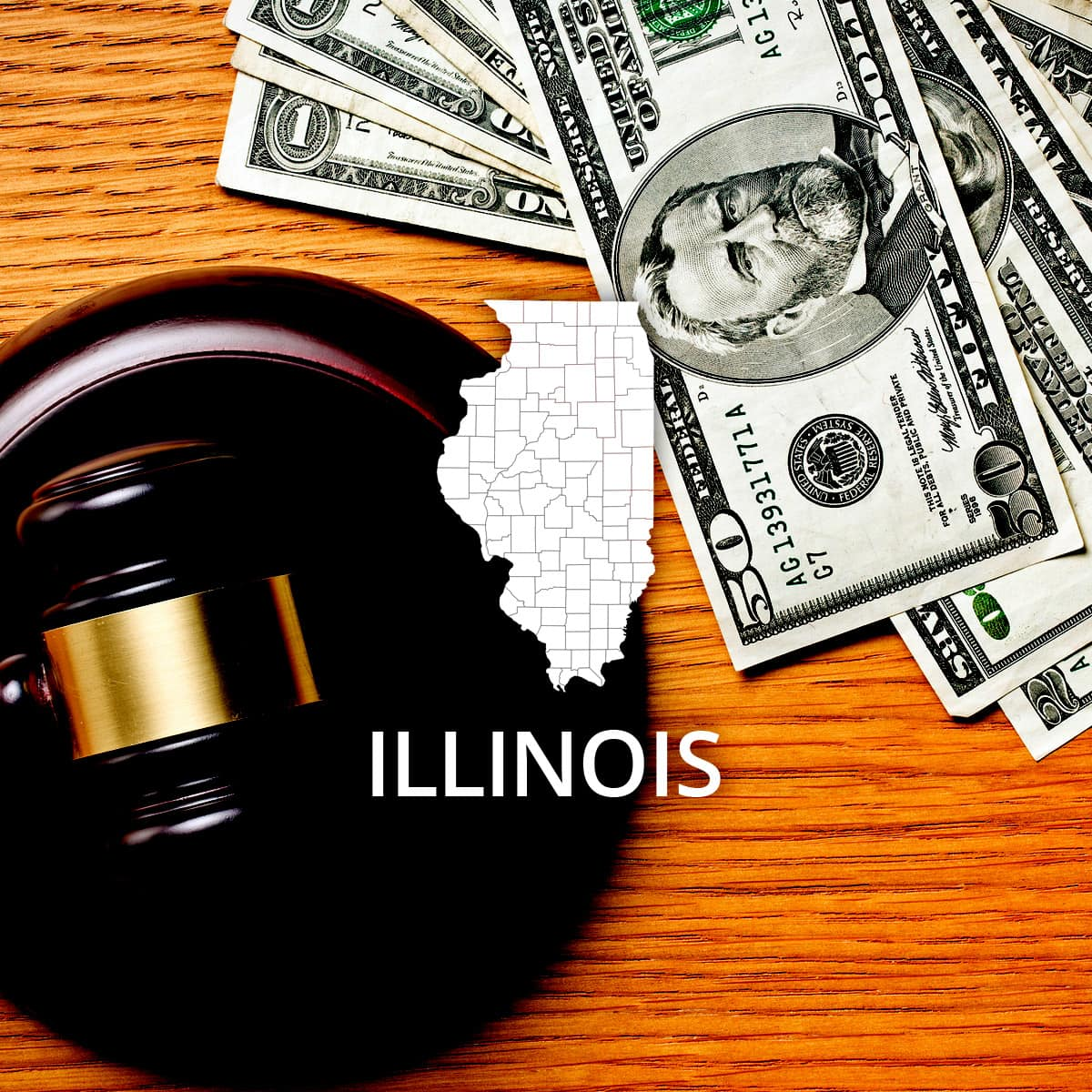 How to File Bankruptcy in Illinois