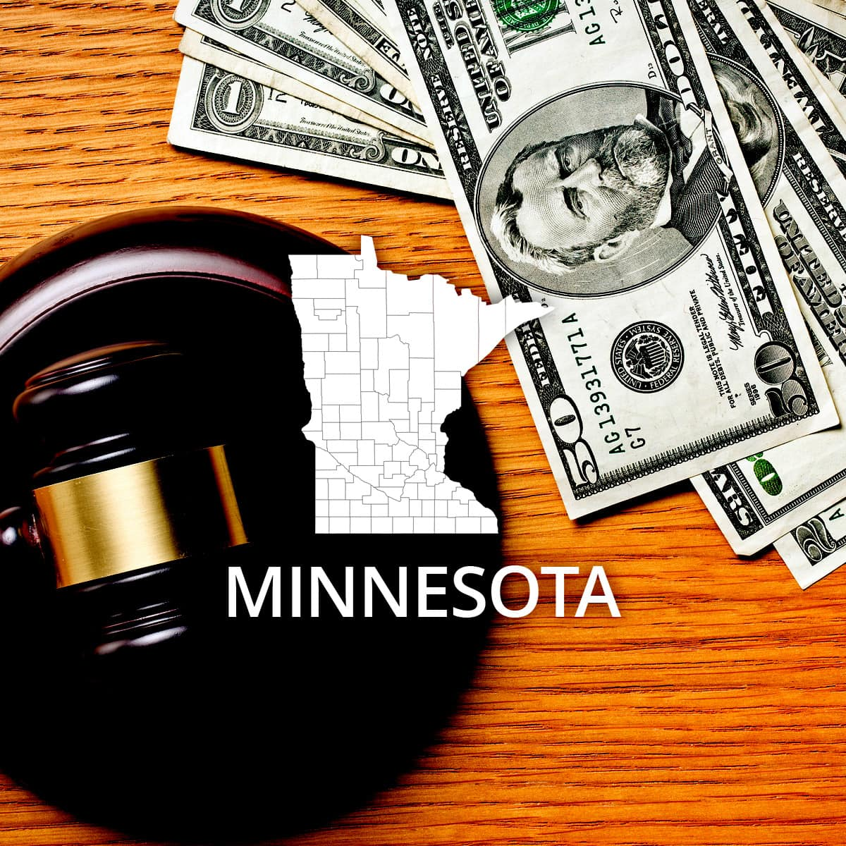 How to File Bankruptcy in Minnesota