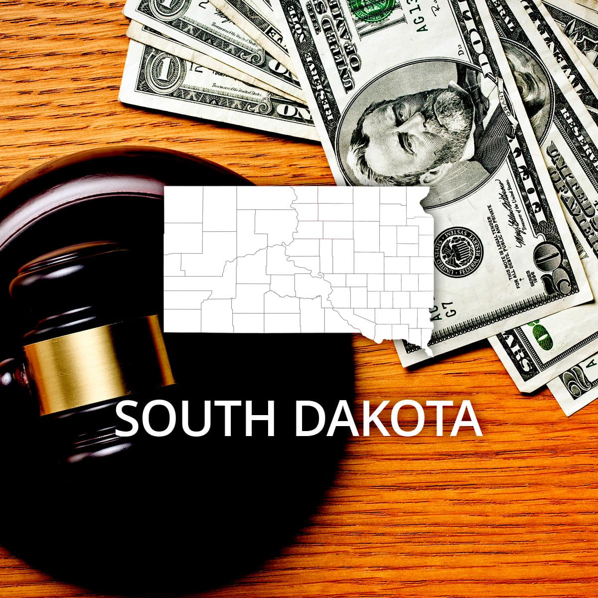 How to File Bankruptcy in South Dakota