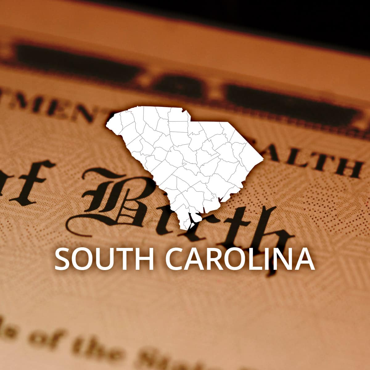 Where to obtain a south carolina birth certificate aiddatafo Image collections