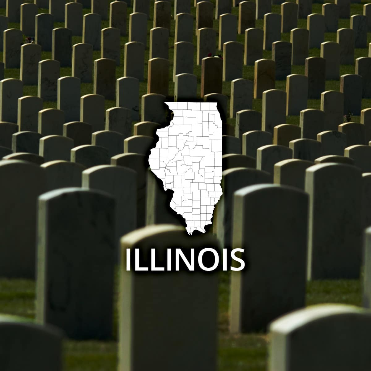 Where to obtain a illinois death certificate xflitez Choice Image
