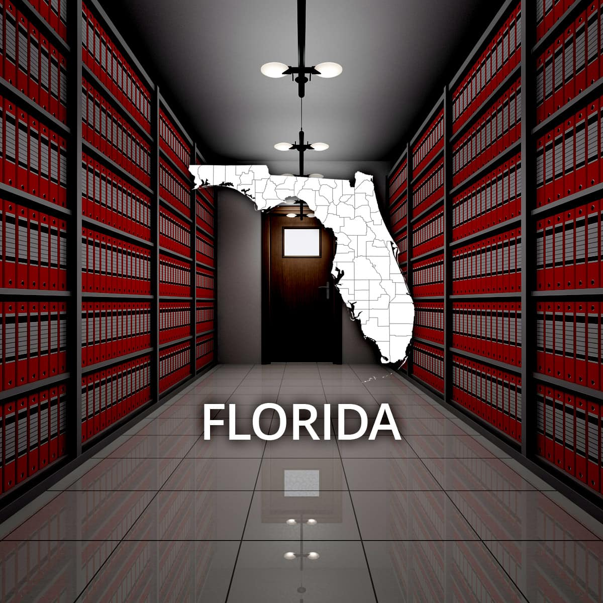 Florida Public Records