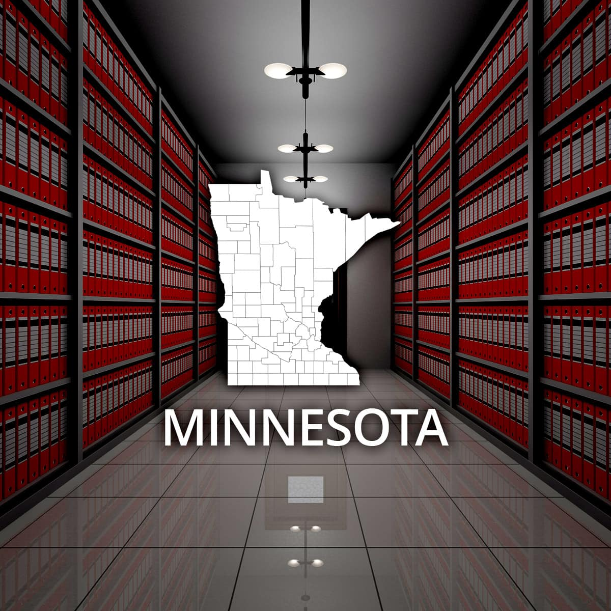 Minnesota Public Records