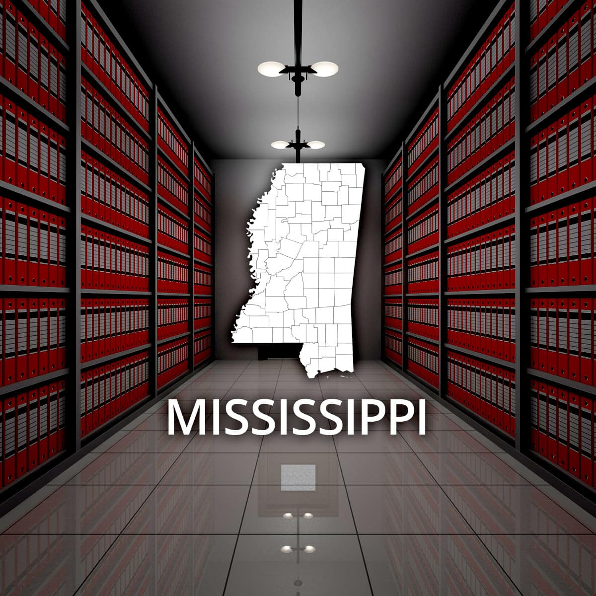 Mississippi Public Records
