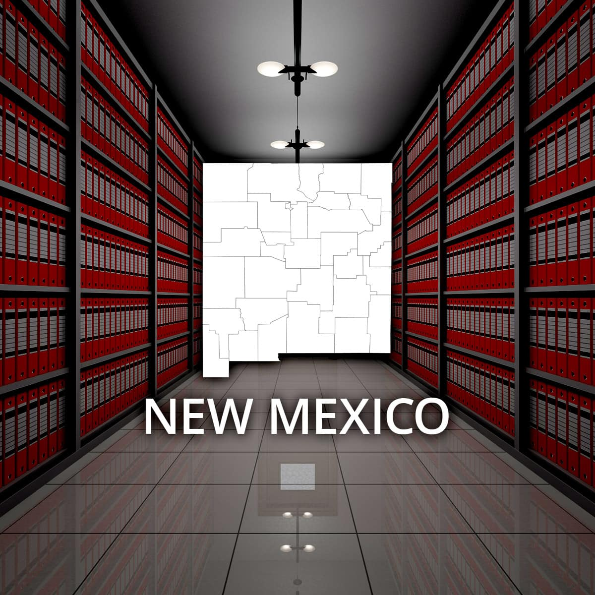New Mexico Public Records