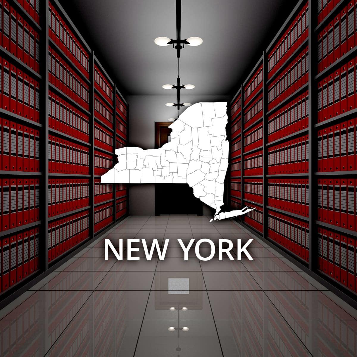 New York Public Records